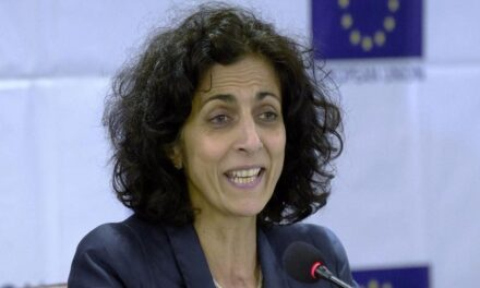 BJP has sown the seeds of hatred in multicultural India: EU human rights chief