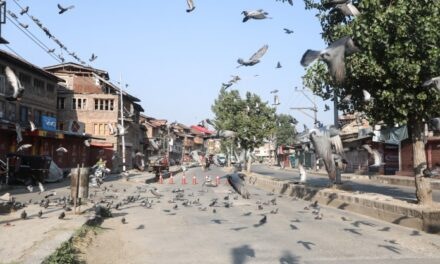 'Economy on deathbed': The great depression in Kashmir